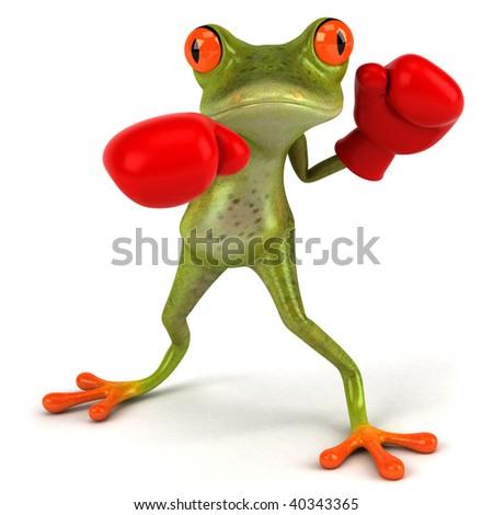 Fun frog boxing - stock photo