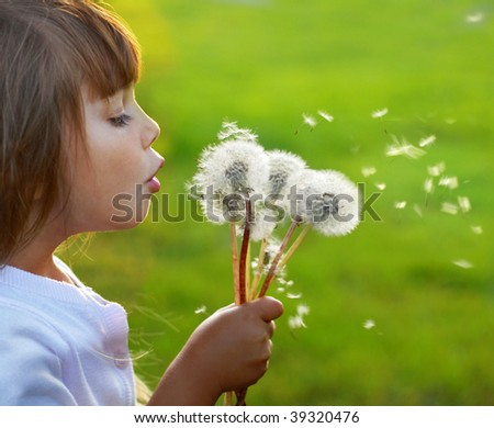 Fun with dandelions - stock photo