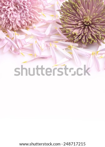 Funeral flowers - stock photo