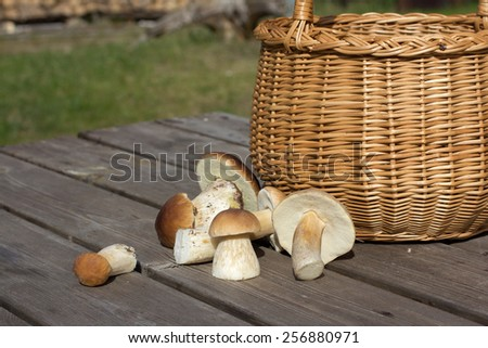 Fungus (Boletus edulis) on wooden table - stock photo
