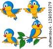 Funny birds cartoon set - stock photo
