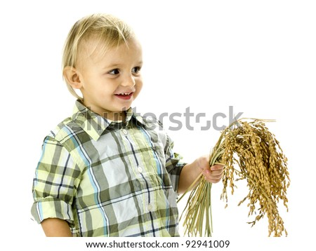 funny boy with rice plants in the hands