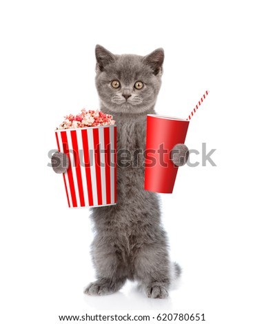 Funny cat with popcorn and cola. isolated on white background