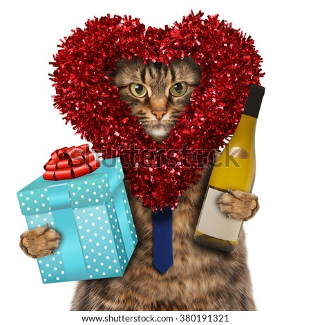 Funny cat with presents. Happy valentine's day.  Funny cat celebrates Valentine's Day