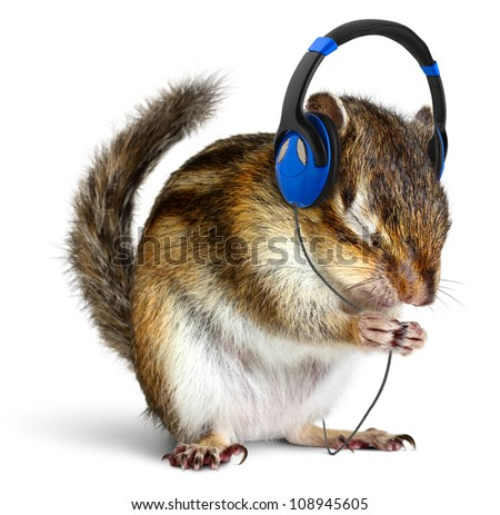 Funny chipmunk listening to music on headphones, isolated on white - stock photo