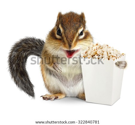 Funny chipmunk with blank popcorn bucket isolated on white
