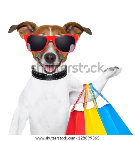 funny  dog with shopping bags and glasses - stock photo