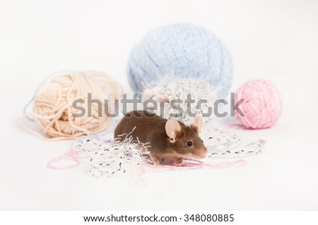 Funny domestic mouse is hiding among tangles of yarn. Yarn is blue, beige, pink and fluffy. Mouse has bushy whiskers. Mouse is funny, cute and curios - stock photo