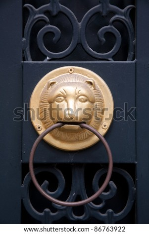 funny gold lion door decoration - stock photo