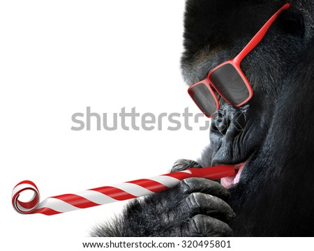 Funny gorilla with red sunglasses celebrating a party by blowing a striped horn - stock photo