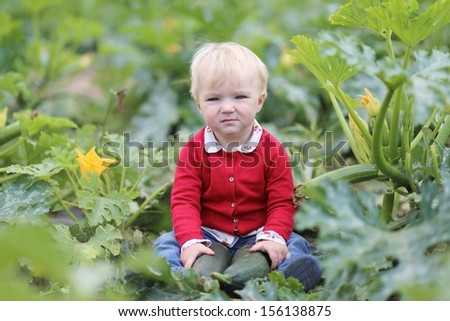 Funny little baby girl in colorful red sweater holds ripe freshly picked zucchini sitting in a middle of vegetable field on farm  - stock photo
