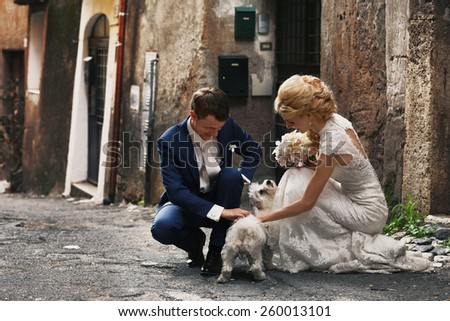 funny picture of bride and groom with the dog - stock photo