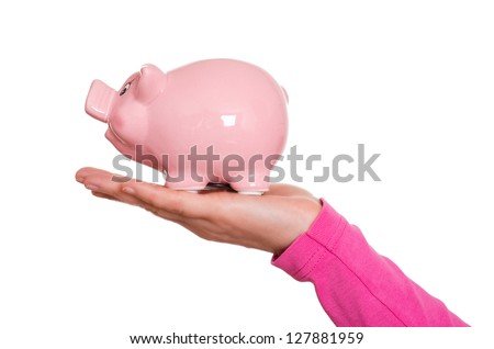 Funny pink pig on a female hand - stock photo