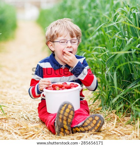 Funny preschool boy in glasses in glasses laughing and picking and red ripe strawberries on organic pick a berry farm in summer, on warm day. - stock photo