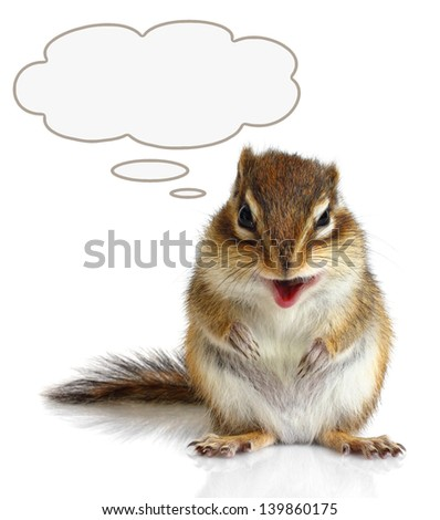 Funny talking chipmunk on white - stock photo