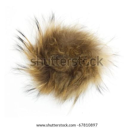 fur on white background - stock photo