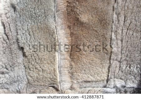 Fur sheepskin shorn natural - stock photo