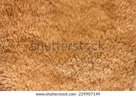 Fur Texture./ Fur Texture.  - stock photo