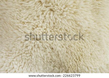 fur texture old white sheepskin - stock photo