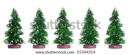 Fur-tree - stock photo