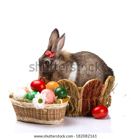 furry brown bunny  with red small bow in straw nest,  many easter colorful eggs and chamomile in straw basket isolated  on white  - stock photo