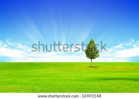 Futuristic landscape with grass and clouds and tree