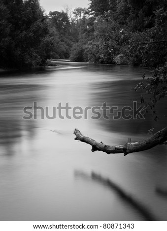 fuzzy river and trunk - stock photo
