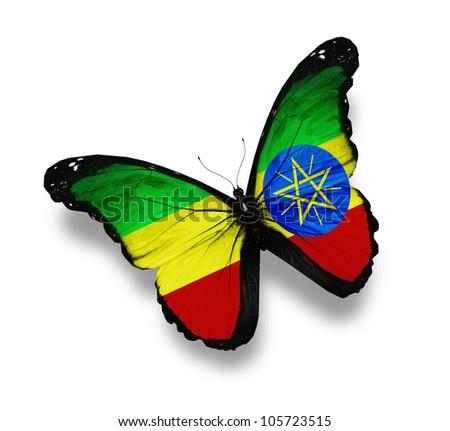 Gabonese flag butterfly, isolated on white - stock photo