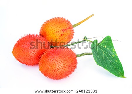 Gac fruit isolated on white background - stock photo