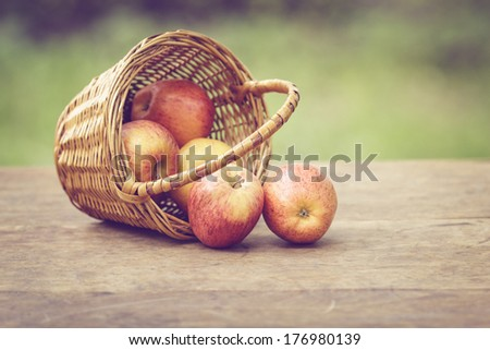 gala apples in the basket on old table, vintage toned photo - stock photo