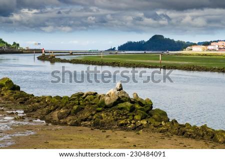 Galicia landscape - stock photo