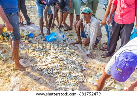 GALLE, SRI LANKA - DECEMBER 3, 2016: The fisherman sells the small fish from the nets on the sand at the local fishing market, on December 3 in Galle.
