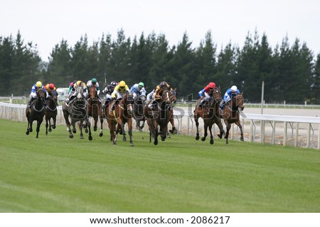 Galloping race horses in the home stretch in Canterbury, New Zealand - stock photo