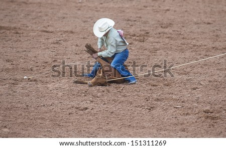 GALLUP , NEW MEXICO - AUGUST 10 : Cowboy Participates in in a Calf roping Competition at the 92nd annual Indian Rodeo in Gallup, NM on August 10 2013 - stock photo