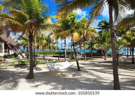 Gamag between the palm trees in hotel Melia Cayo Guillermo. Cuba. - stock photo