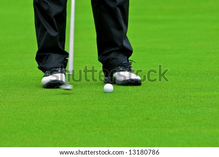 Game in the golf club against the background of the green juicy grass