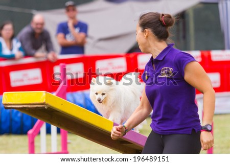 GANDIA, SPAIN - MAY 18: Dog and owner run in the Spanish Agility championship on May 18, 2013, Gandia, Spain