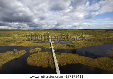 Gangway in the swamp - stock photo