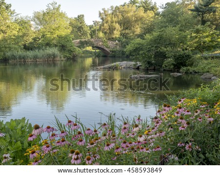 Gapstow bridge in Central Park on pond with flowers in summer in early morning