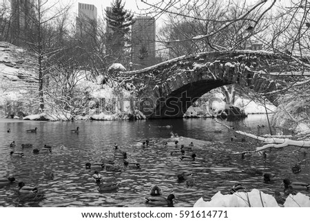 Gapstow bridge over the lake with snow and ducks at Central Park in black and white style