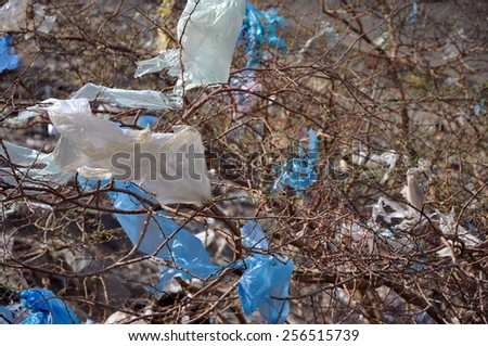 Garbage in nature - stock photo