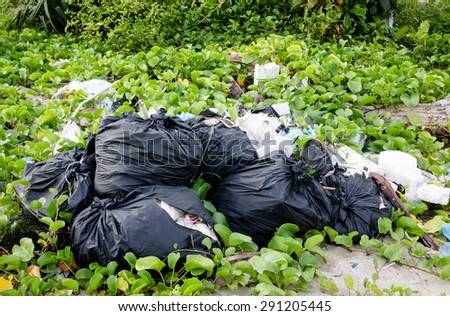 Garbage on the beach,environmental pollution concept . - stock photo