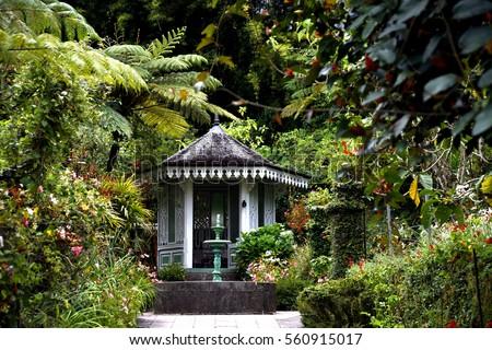 Ordinaire Garden And Flowers In La Maison Folio, Hell Bourg, La Reunion Island,