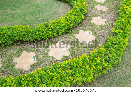 garden and path  - stock photo
