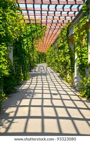 Garden archway in bloom - pergola, Wroclaw, Poland - stock photo