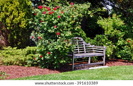 Garden bench - stock photo