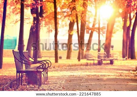 garden bench in autumn park landscape - stock photo