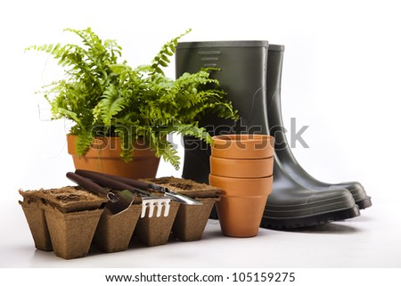 Garden boots with tool, plant - stock photo