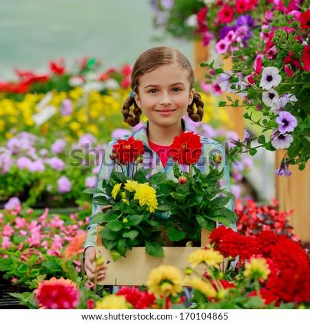 Garden center, planting - Lovely girl holding flowers in garden center. - stock photo