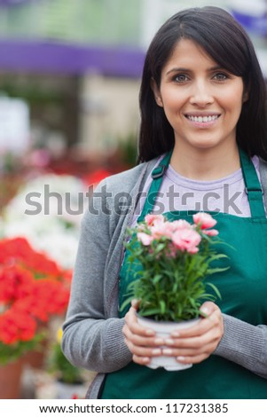 garden center worker holding a potted pink flower and smiling - stock photo